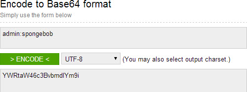 Use the admin:password format for your encoding